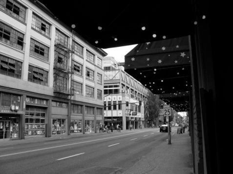 naomi-fast-pdx-photography-_awning-of-stars_