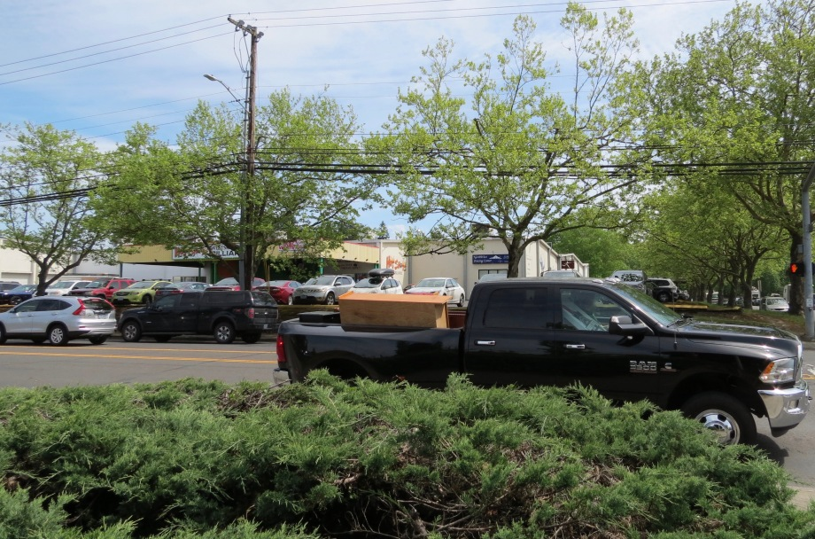 Large trucks & SUVs on our city streets