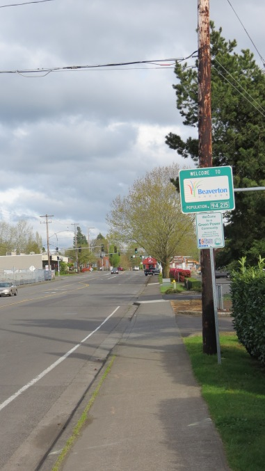 Beaverton road, with a disappearing bike lane.