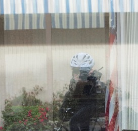 Bicycle rider reflection in shop window