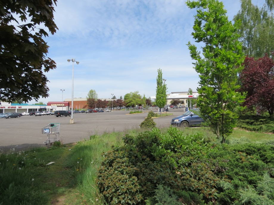 Beaverton's sprawling parking lots