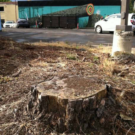 stump in the foreground of the cut tree mural