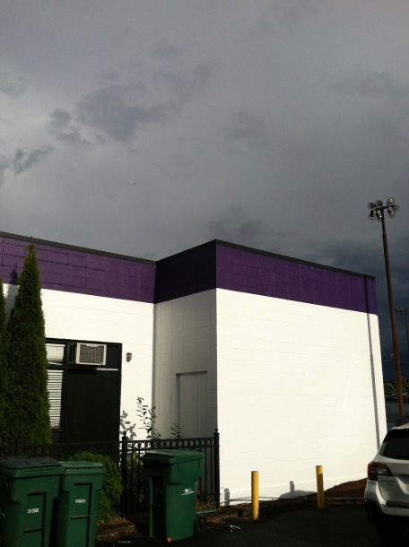 Purple building top juxtaposed with storm sky. Airplane in the distant sky.
