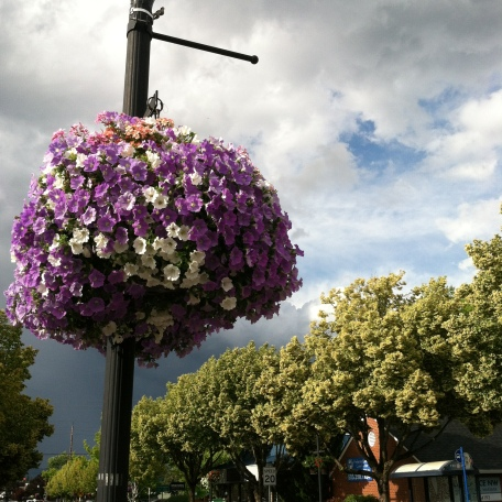 Flowers on a street lamp under stormy sky