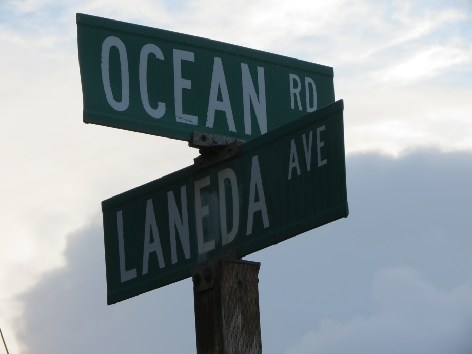 Street signs Ocean Road and Laneda Ave