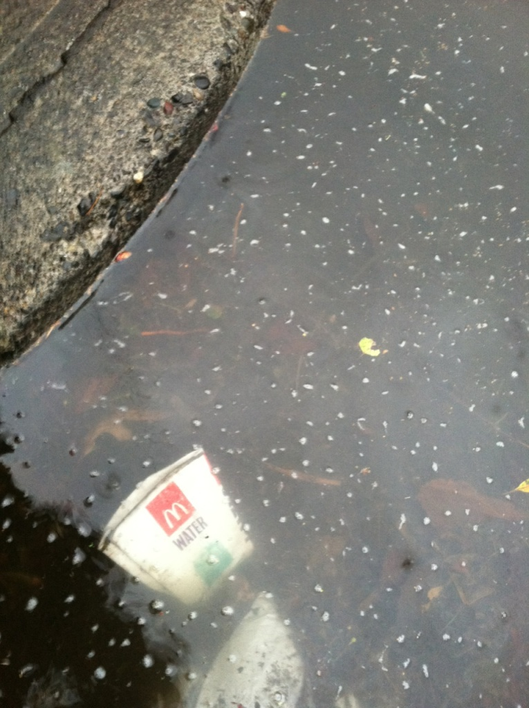 A sidewalk curb with a puddle almost overflowing onto it, with a McDonald's water cup floating in the muck