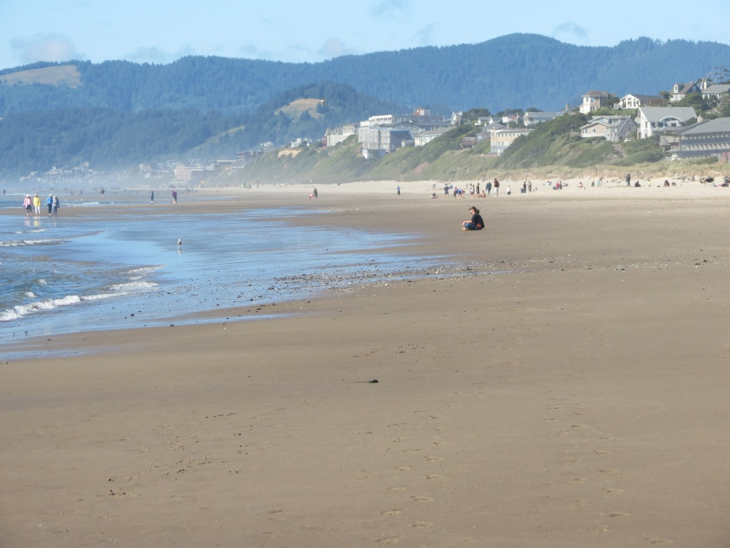 Ocean beach, with forested hills in the distance, some buildings, and people scattered on the sand. One man sits in meditation pose, facing the waves